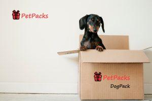 PetPacks DogPack