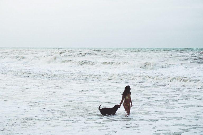 Kutyabarát strandok és fürdőhelyek